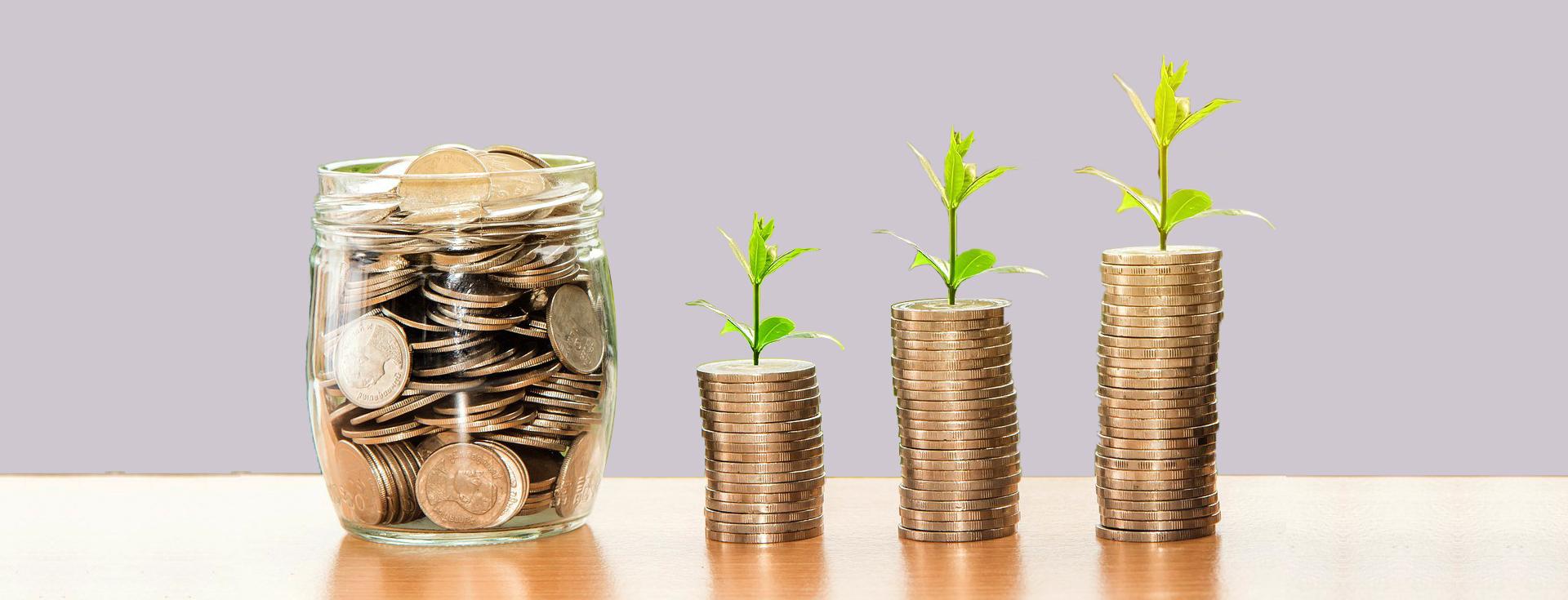 La formazione : Investimento e non puro costo